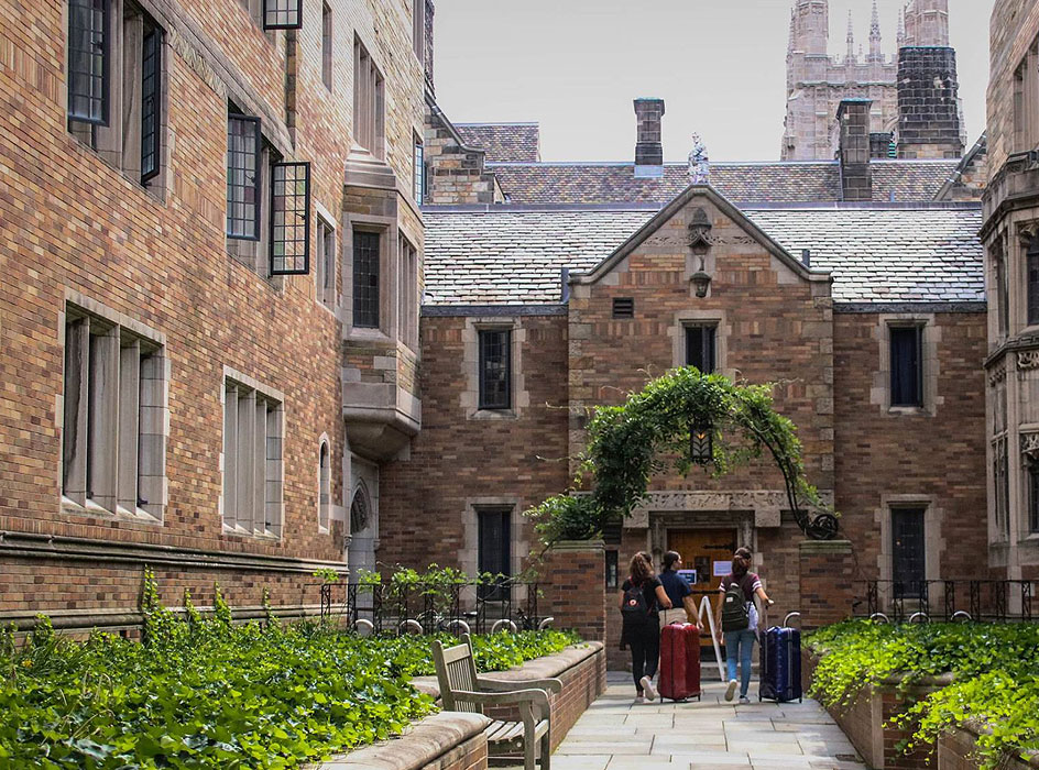 Yale Arriva